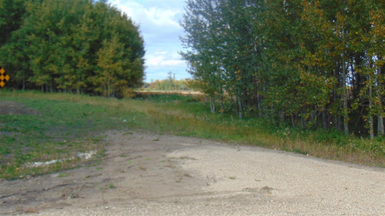 #1 470 Twp 243a Rge Rd., Rural Wetaskiwin County, Alberta  T9A 1W8 - Photo 3 - E4202148