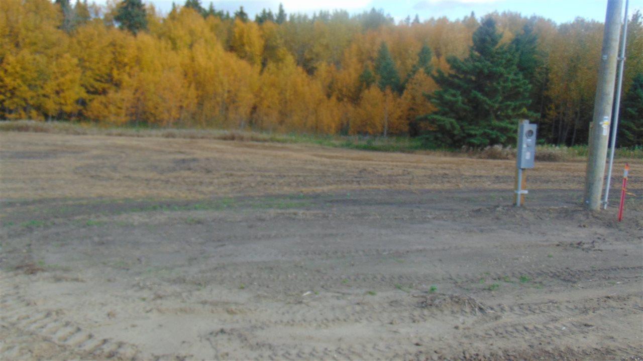 #1 470 Twp 243a Rge Rd., Rural Wetaskiwin County, Alberta  T9A 1W8 - Photo 8 - E4202148