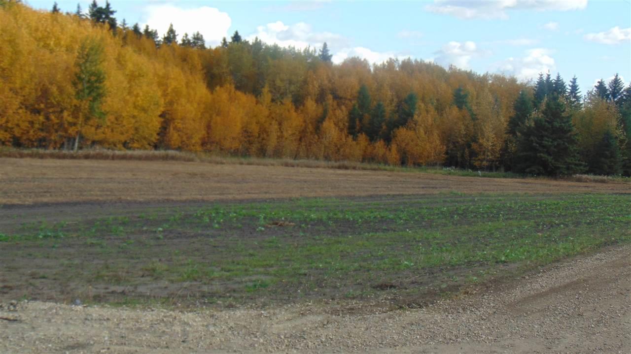 #3 470 Twp 243a Rge Rd, Rural Wetaskiwin County, Alberta  T9A 1W8 - Photo 2 - E4202158