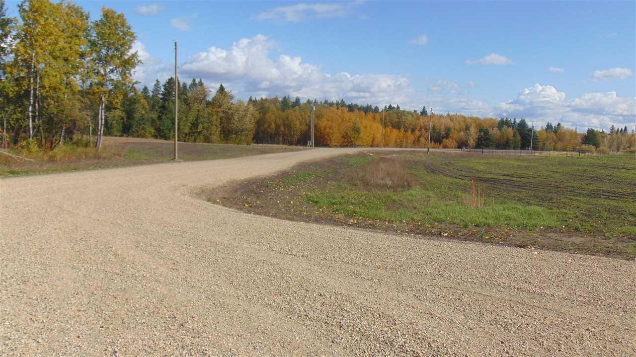 #5 470 Twp 243a Rge Rd, Rural Wetaskiwin County, Alberta  T9A 1W8 - Photo 8 - E4202161