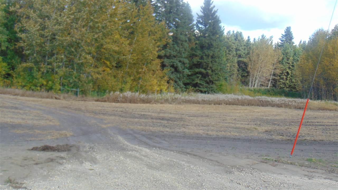 #5 470 Twp 243a Rge Rd, Rural Wetaskiwin County, Alberta  T9A 1W8 - Photo 5 - E4202161