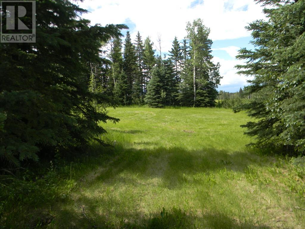 120 Meadow Ponds  Drive, Rural Clearwater County, Alberta  T4T 1A7 - Photo 4 - A1021107