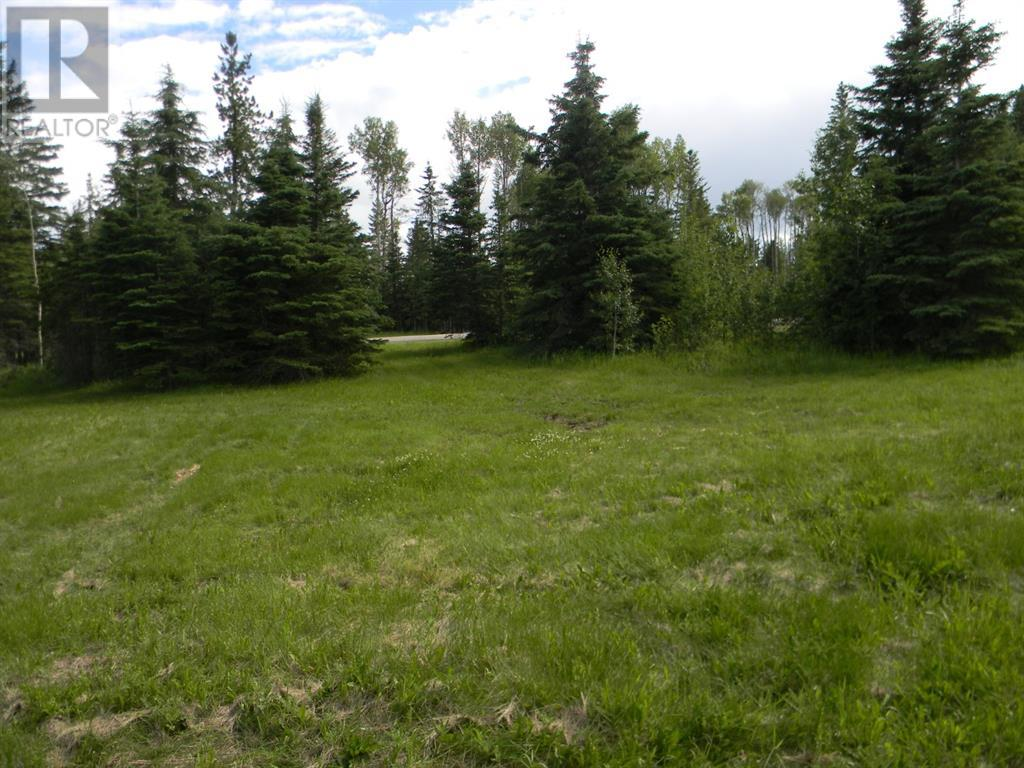 120 Meadow Ponds  Drive, Rural Clearwater County, Alberta  T4T 1A7 - Photo 6 - A1021107