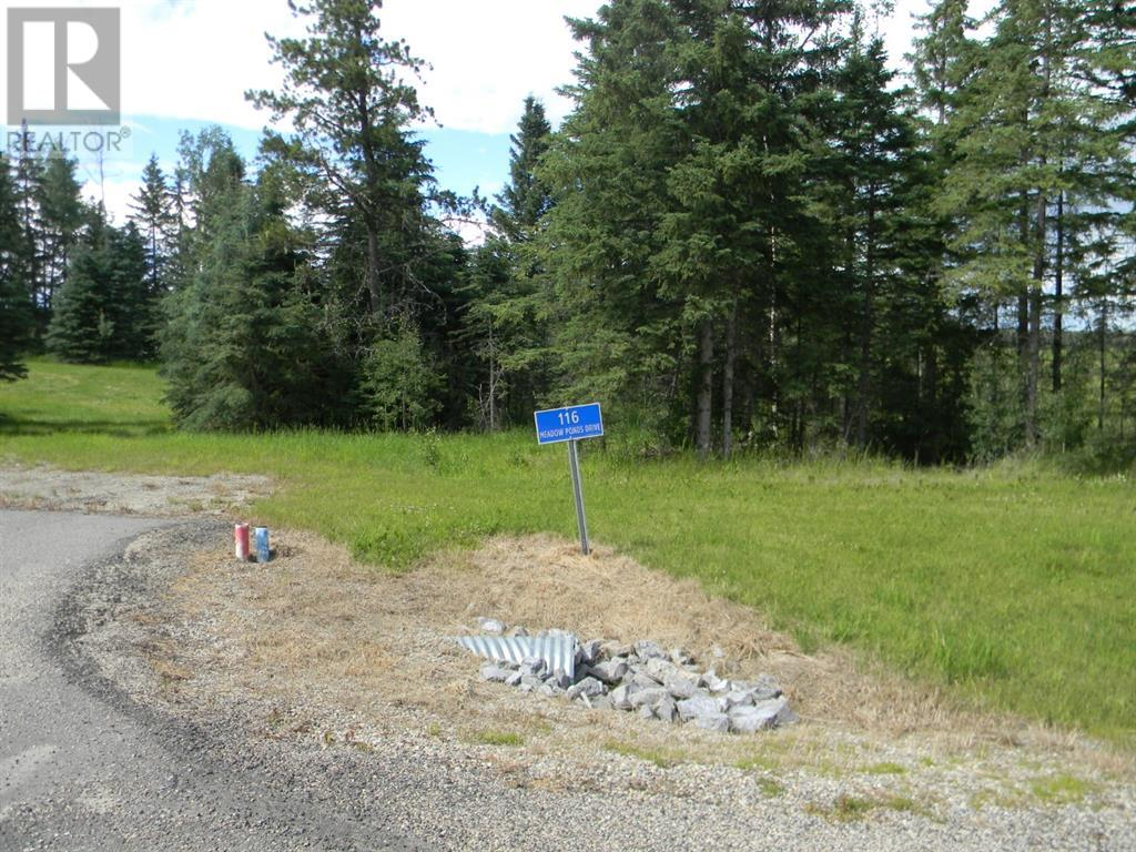 116 Meadow Ponds  Drive, Rural Clearwater County, Alberta  T4T 1A7 - Photo 5 - A1021112