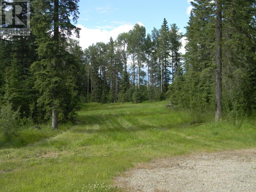 128 Meadow Ponds  Drive, Rural Clearwater County, Alberta  T4T 1A7 - Photo 4 - A1021093