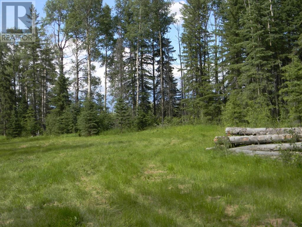 128 Meadow Ponds  Drive, Rural Clearwater County, Alberta  T4T 1A7 - Photo 6 - A1021093
