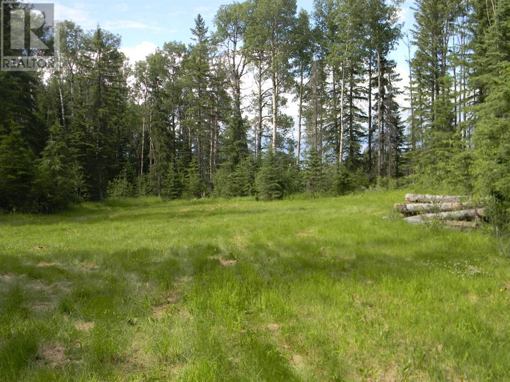 128 Meadow Ponds  Drive, Rural Clearwater County, Alberta  T4T 1A7 - Photo 1 - A1021093