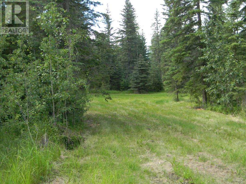 136 Meadow Ponds  Drive, Rural Clearwater County, Alberta  T4T 1A7 - Photo 6 - A1021088