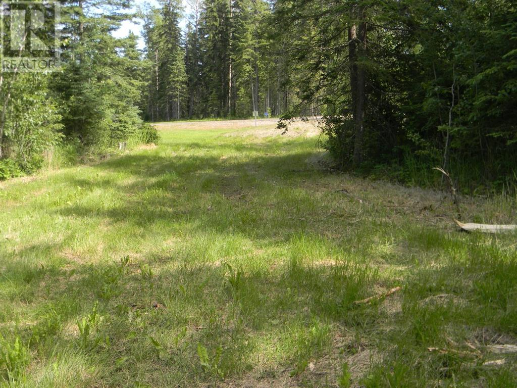 136 Meadow Ponds  Drive, Rural Clearwater County, Alberta  T4T 1A7 - Photo 13 - A1021088
