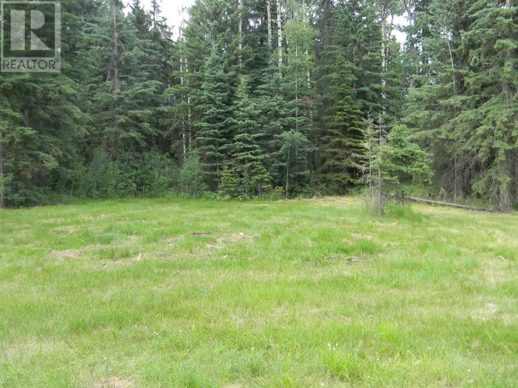 132 Meadow Ponds  Drive, Rural Clearwater County, Alberta  T4T 1A7 - Photo 9 - A1021089
