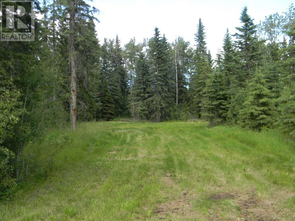 132 Meadow Ponds  Drive, Rural Clearwater County, Alberta  T4T 1A7 - Photo 5 - A1021089