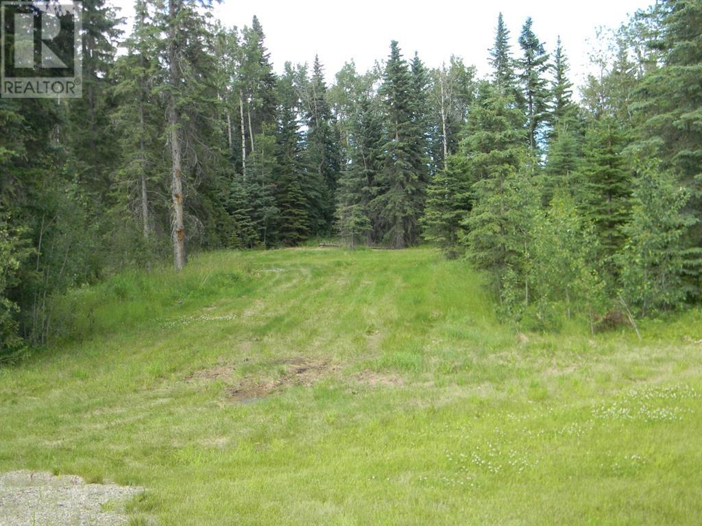 132 Meadow Ponds  Drive, Rural Clearwater County, Alberta  T4T 1A7 - Photo 7 - A1021089