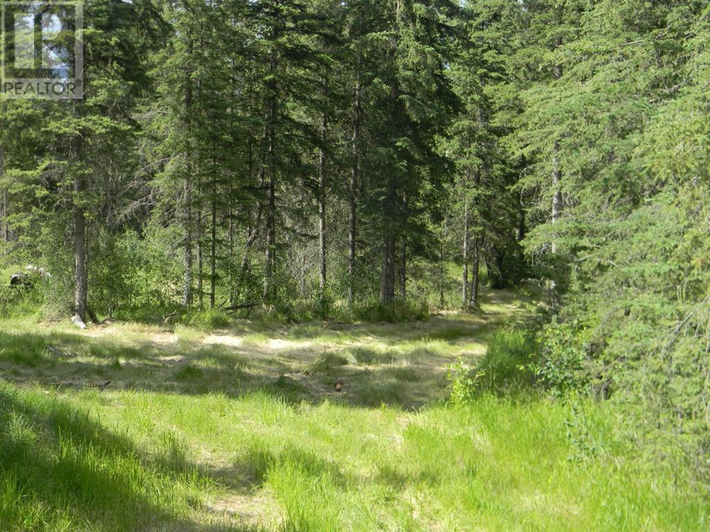 140 Meadow Ponds  Drive, Rural Clearwater County, Alberta  T4T 1A7 - Photo 3 - A1021074