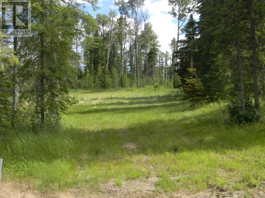 127 Meadow Ponds  Drive, Rural Clearwater County, Alberta  T4T 1A7 - Photo 3 - A1021050