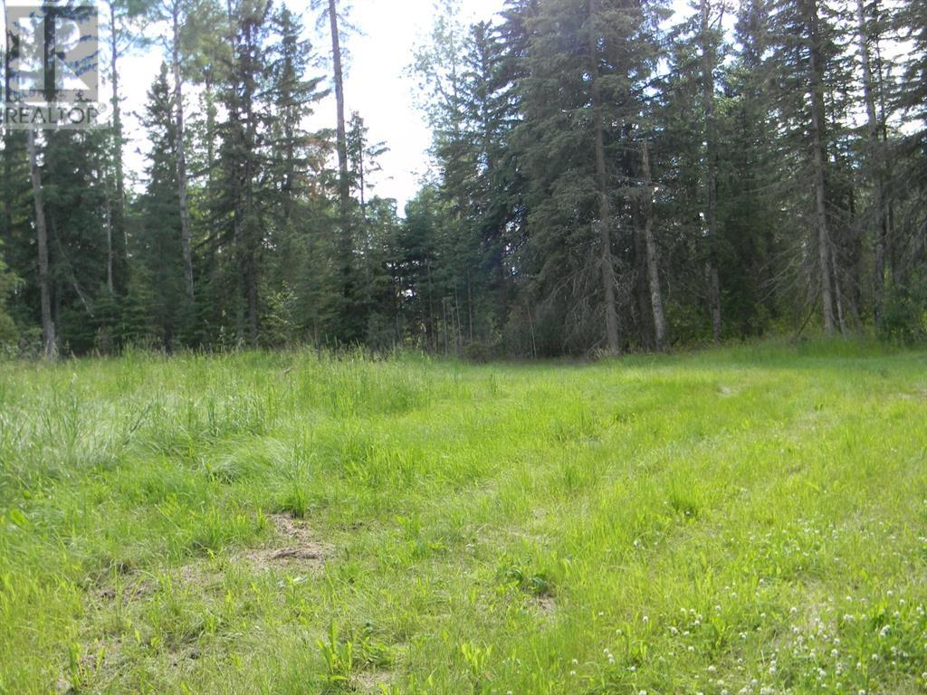 131 Meadow Ponds  Drive, Rural Clearwater County, Alberta  T4T 1A7 - Photo 7 - A1021056