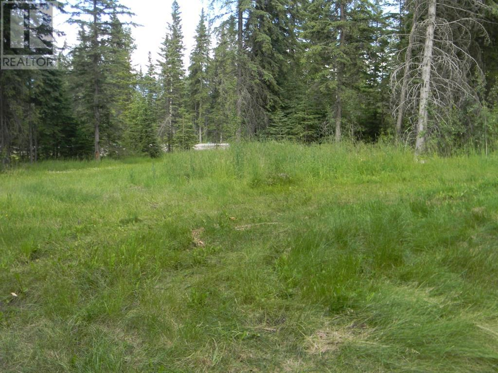 131 Meadow Ponds  Drive, Rural Clearwater County, Alberta  T4T 1A7 - Photo 5 - A1021056