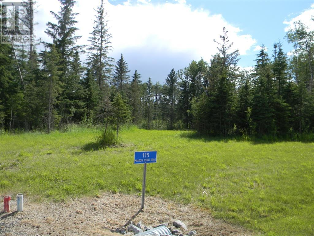 115 Meadow Ponds  Drive, Rural Clearwater County, Alberta  T4T 1A7 - Photo 3 - A1020971