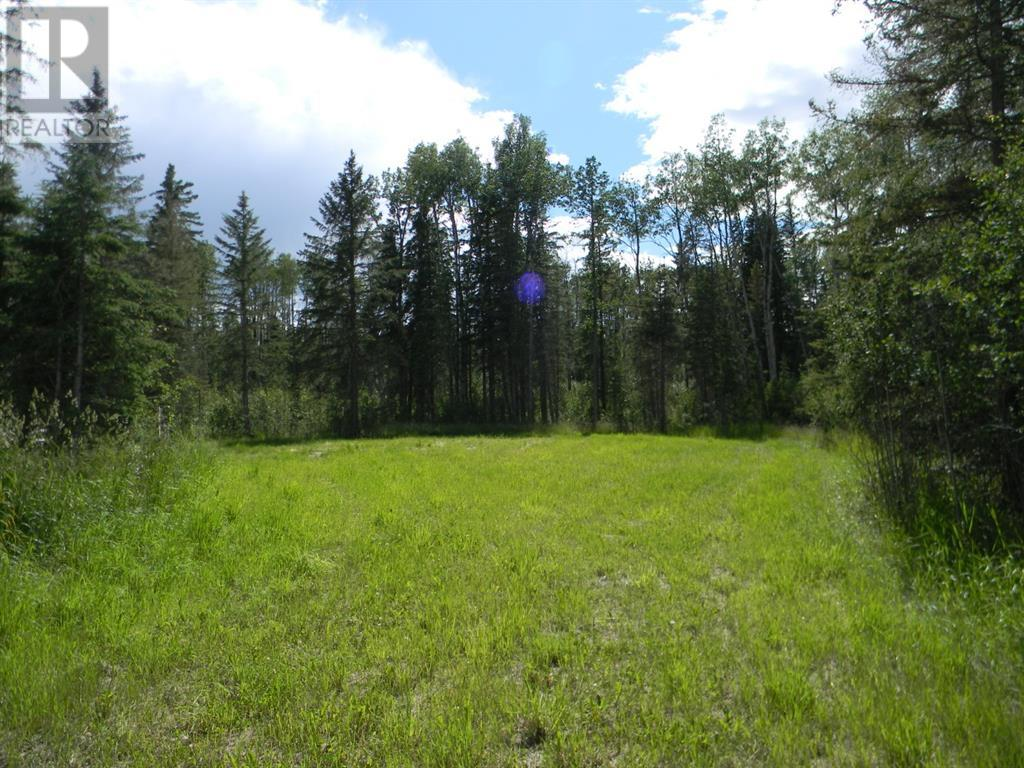 115 Meadow Ponds  Drive, Rural Clearwater County, Alberta  T4T 1A7 - Photo 4 - A1020971