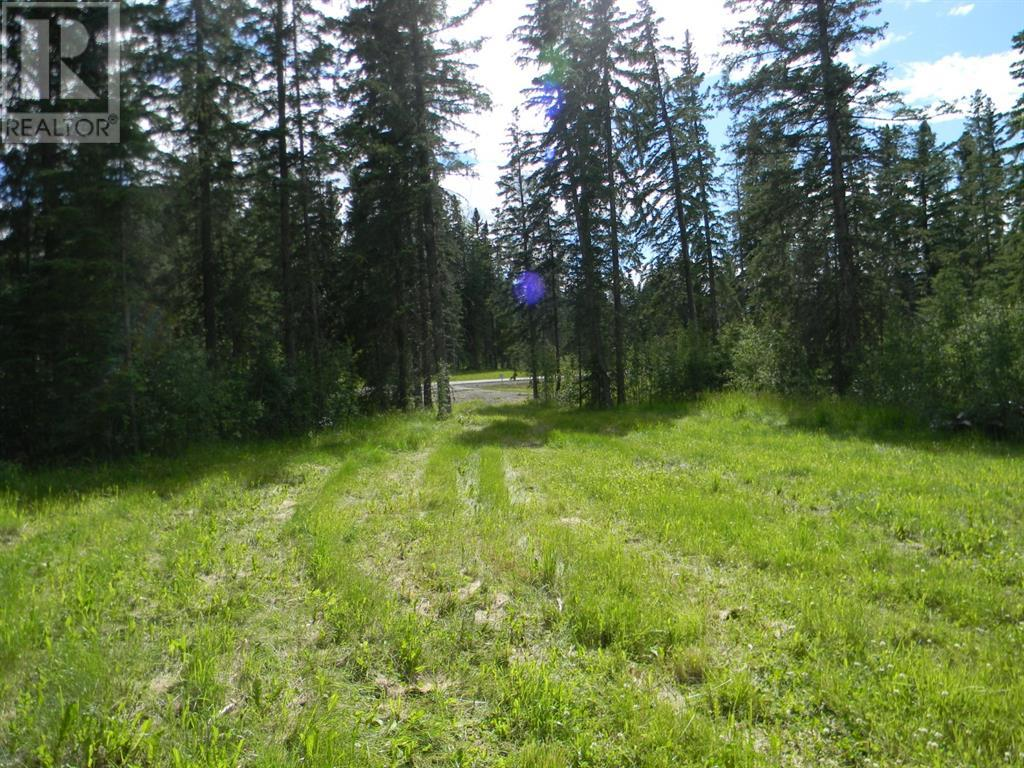 124 Meadow Ponds  Drive, Rural Clearwater County, Alberta  T4T 1A7 - Photo 7 - A1021097