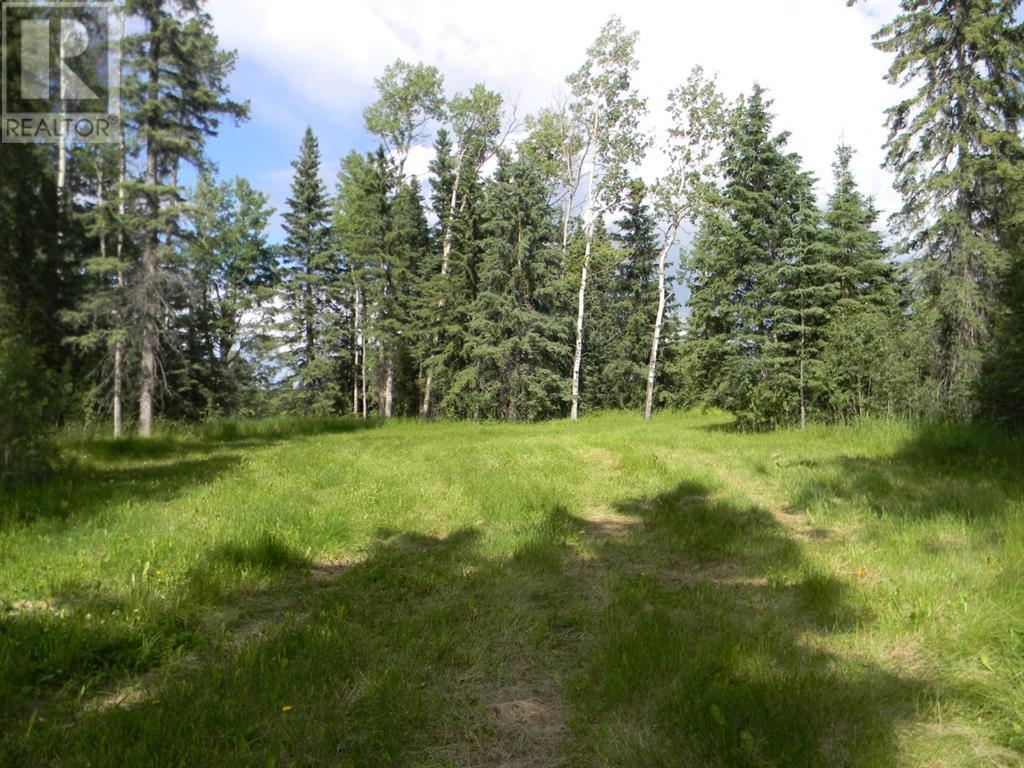 124 Meadow Ponds  Drive, Rural Clearwater County, Alberta  T4T 1A7 - Photo 2 - A1021097