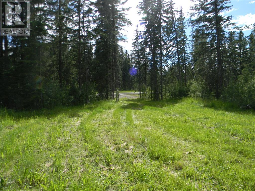 124 Meadow Ponds  Drive, Rural Clearwater County, Alberta  T4T 1A7 - Photo 4 - A1021097