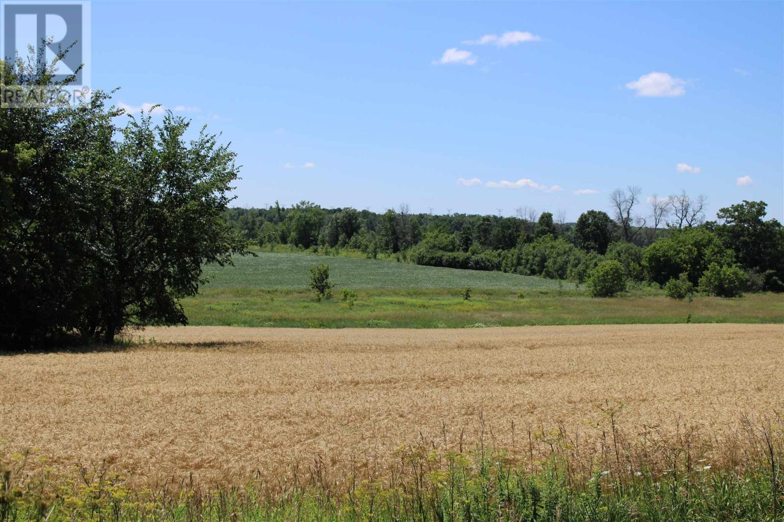 0 County 1 Rd W, Greater Napanee, Ontario  K7R 3L1 - Photo 19 - K20004187
