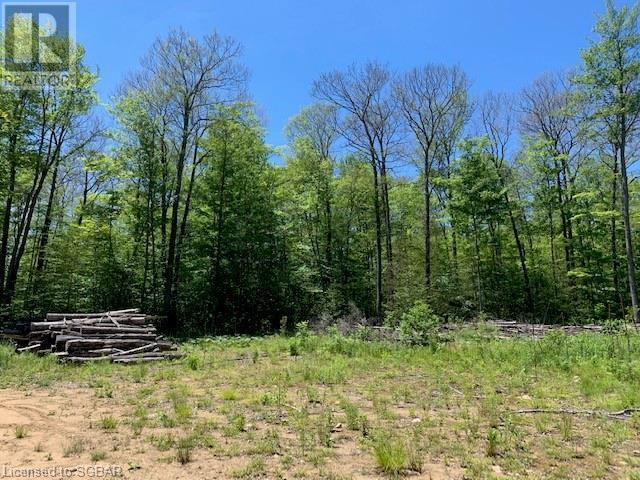Lt 51 Whispering Pine Circle, Tiny, Ontario  L9M 0C2 - Photo 3 - 40076436