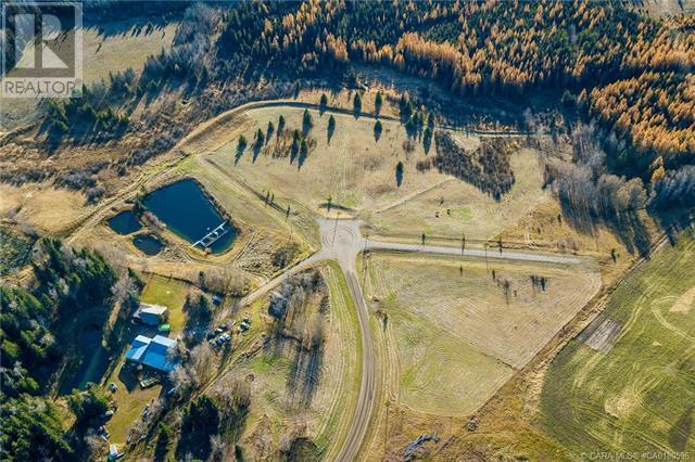 111 Blueberry Meadows Lane, Rural Clearwater County, Alberta  T0M 1H0 - Photo 26 - CA0180596