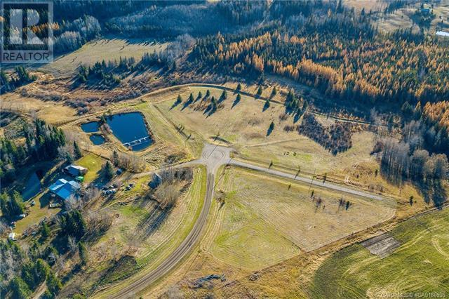 111 Blueberry Meadows Lane, Rural Clearwater County, Alberta  T0M 1H0 - Photo 25 - CA0180596