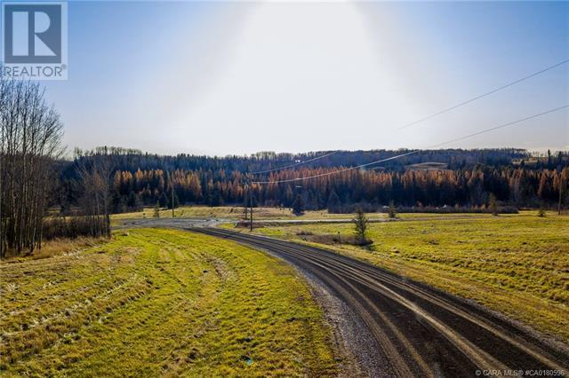 111 Blueberry Meadows Lane, Rural Clearwater County, Alberta  T0M 1H0 - Photo 28 - CA0180596
