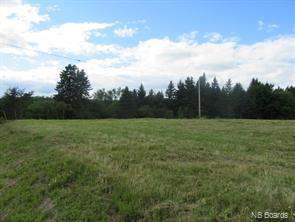 13.59 Acres King George Highway, Miramichi, New Brunswick  E1V 5L8 - Photo 4 - NB053514
