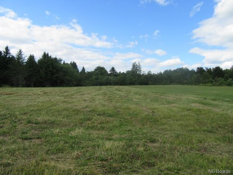13.59 Acres King George Highway, Miramichi, New Brunswick  E1V 5L8 - Photo 1 - NB053514