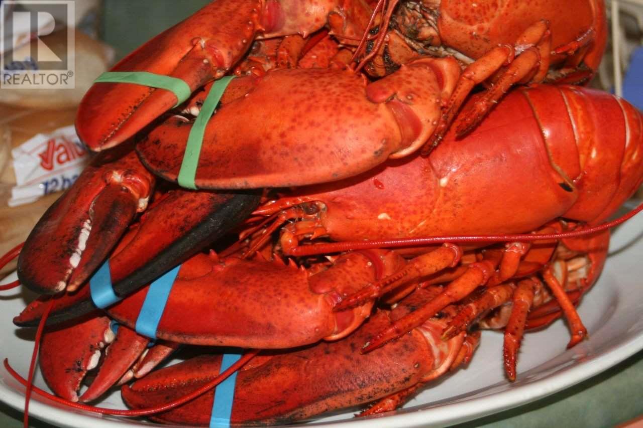 Lot 07-8 Lot07-8 Kerrs Mills Road, Wallace River West, Nova Scotia  B0K 1Y0 - Photo 26 - 5161969