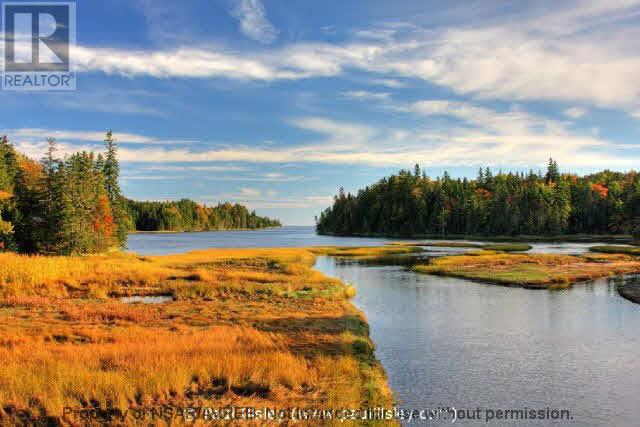 Lot 07-8 Lot07-8 Kerrs Mills Road, Wallace River West, Nova Scotia  B0K 1Y0 - Photo 5 - 5161969