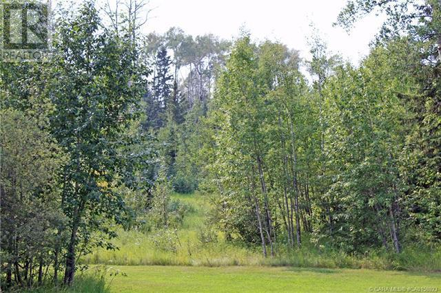 4 Forest Close, Rural Clearwater County, Alberta  T4T 2A4 - Photo 2 - CA0158923