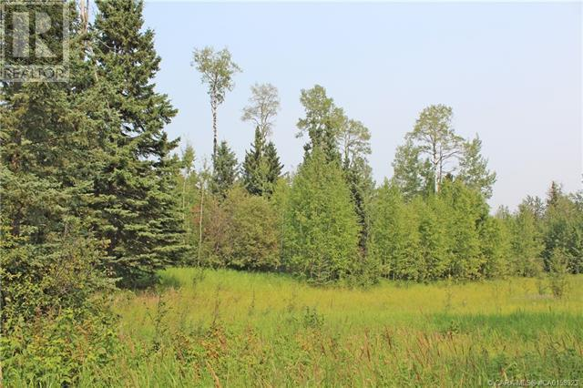 4 Forest Close, Rural Clearwater County, Alberta  T4T 2A4 - Photo 1 - CA0158923