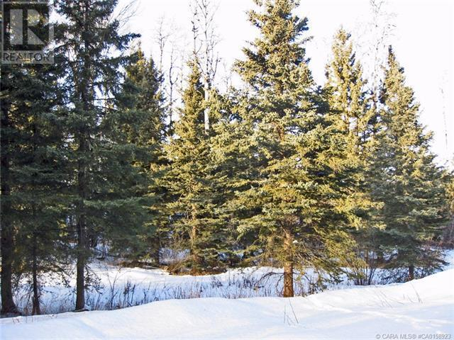 4 Forest Close, Rural Clearwater County, Alberta  T4T 2A4 - Photo 5 - CA0158923
