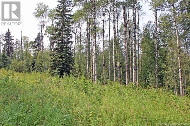 5 Sandhills Drive, Rural Clearwater County, Alberta  T4T 2A4 - Photo 3 - CA0158926
