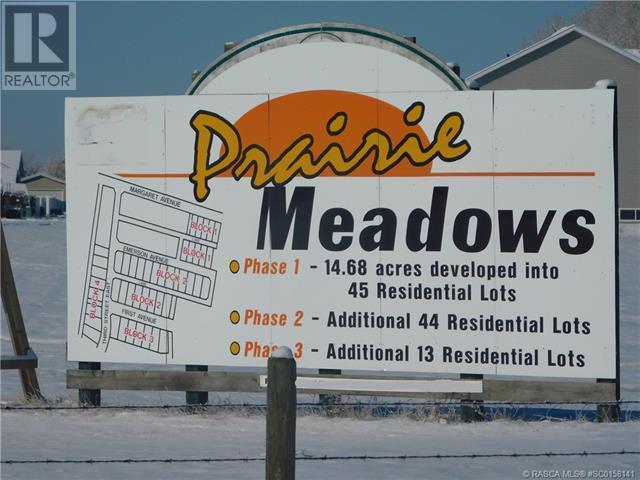 400 Howe Avenue E, Duchess, Alberta  T0J 0Z0 - Photo 10 - SC0158141