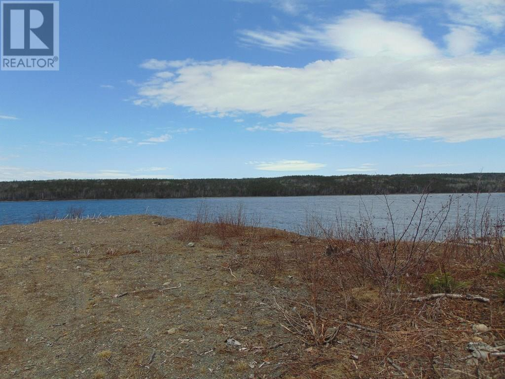 12 Lakeview Drive, Millertown, Newfoundland & Labrador  A0H 1V0 - Photo 13 - 1212369