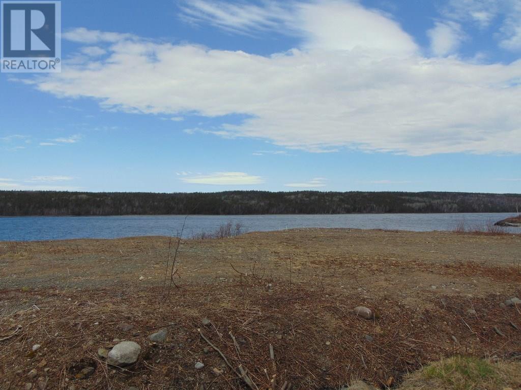 12 Lakeview Drive, Millertown, Newfoundland & Labrador  A0H 1V0 - Photo 14 - 1212369