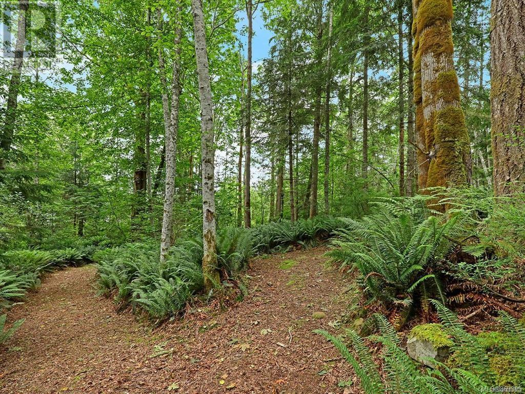MLS® #869395 - Courtenay For sale Image #42