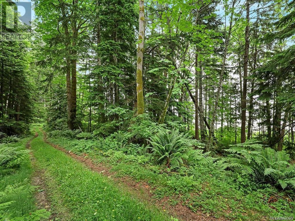 MLS® #869395 - Courtenay For sale Image #53