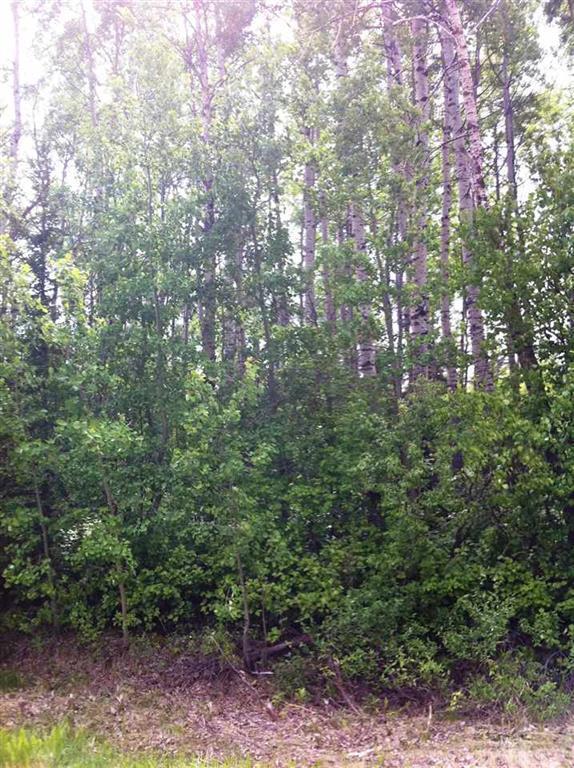 2229 Twp Rd 534, Rural Parkland County, Alberta  T0E 1V0 - Photo 4 - E4234276