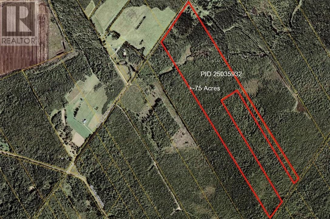 Lot 41 Mclean Settlement Backroad, St. Paul, New Brunswick  E4T 3B8 - Photo 1 - M133665