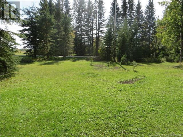 6312 47 Avenue, Rocky Mountain House, Alberta  T4T 1G3 - Photo 6 - CA0093428