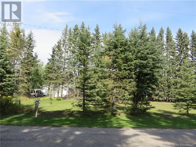 6312 47 Avenue, Rocky Mountain House, Alberta  T4T 1G3 - Photo 10 - CA0093428