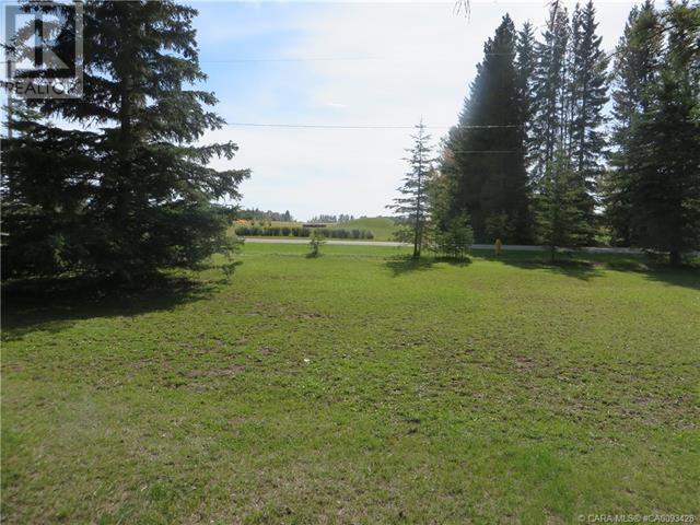 6312 47 Avenue, Rocky Mountain House, Alberta  T4T 1G3 - Photo 5 - CA0093428