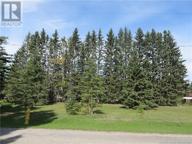 6312 47 Avenue, Rocky Mountain House, Alberta  T4T 1G3 - Photo 2 - CA0093428