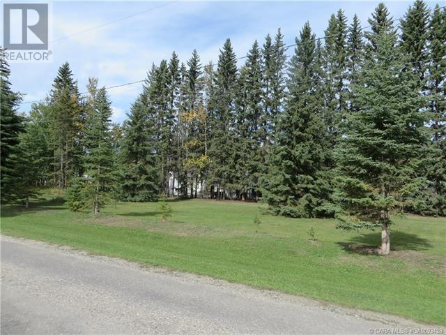 6312 47 Avenue, Rocky Mountain House, Alberta  T4T 1G3 - Photo 26 - CA0093428